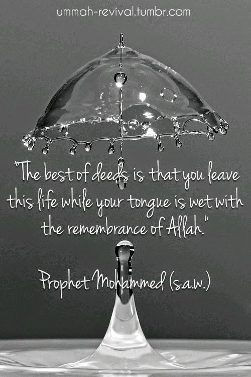 60 Beautiful Islamic Quotes About Life With Images 60 UPDATED Gorgeous Best Quotes Islamic