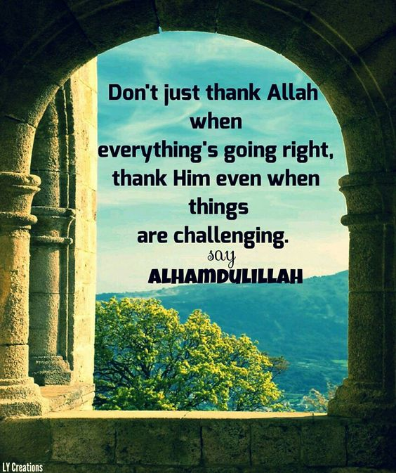 Daily Islamic Quotes - Don't just thank Allah when everything's going right, thank Him even when things are challenging. Say Alhamdulillah.