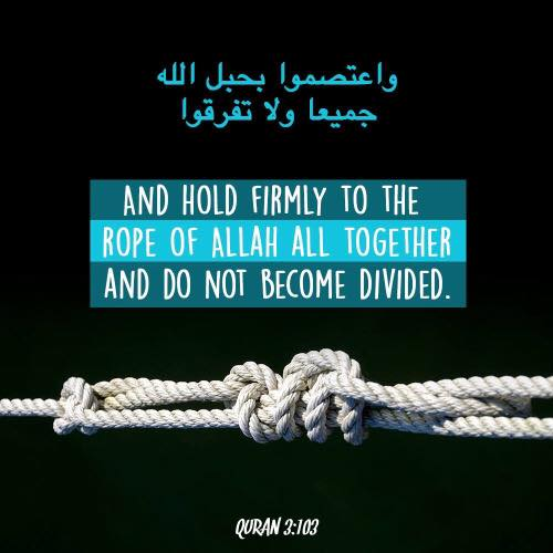 Beautiful Islamic Quotes - And hold firmly to the rope of Allah all together and do not become divided | Quran 3:103