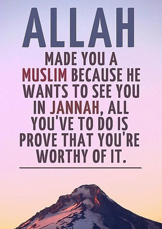 150+ Inspirational Islamic Quotes About Life | With Beautiful Images