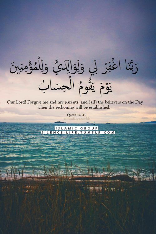 200 Beautiful Quran Quotes Verses Surah With Pictures
