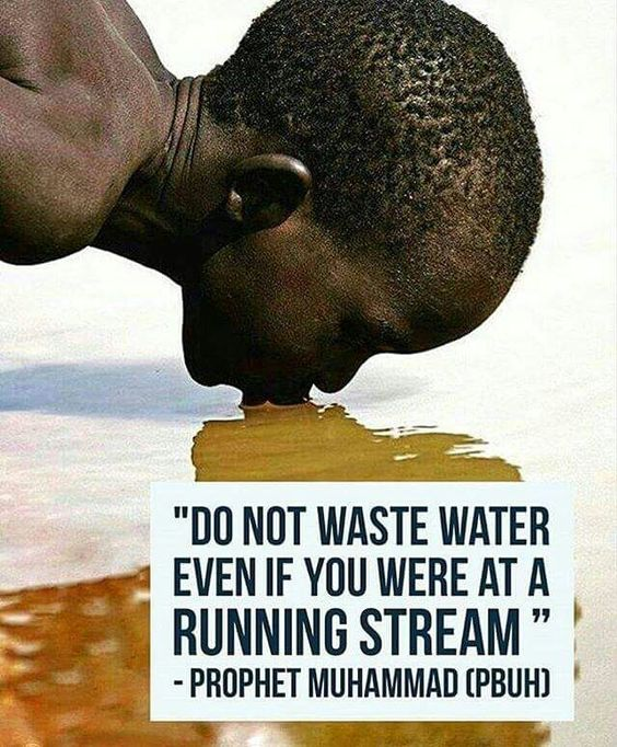 Free Famous Clean Drinking Water Quotes