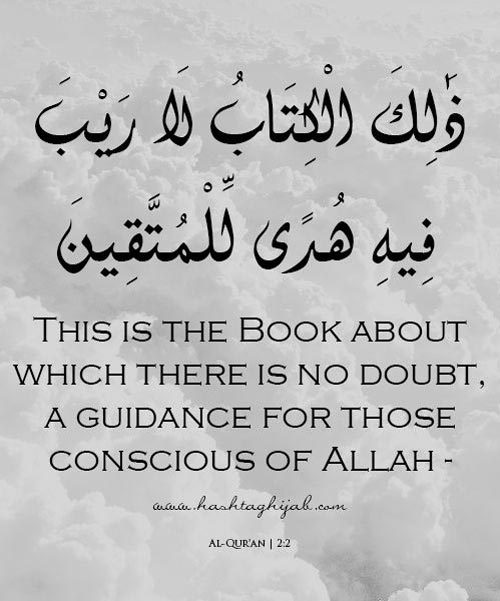 200+ Beautiful Quran Quotes, Verses & Surah [WITH PICTURES]