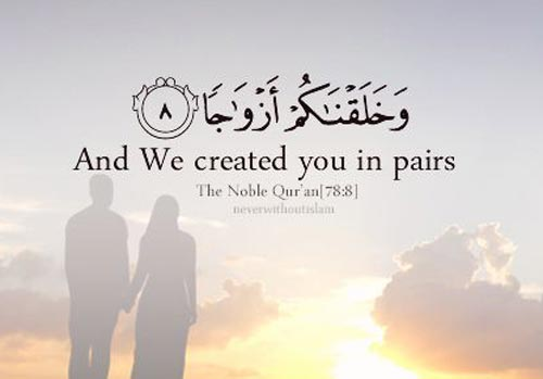 And We Created You In Pairs Thele Quran