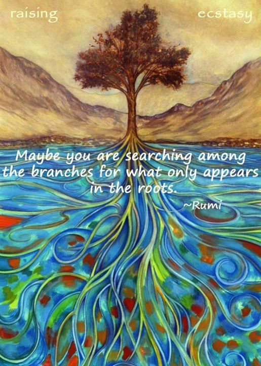 rumi quotes - Maybe you are searching among the branches for what only appears in the roots.