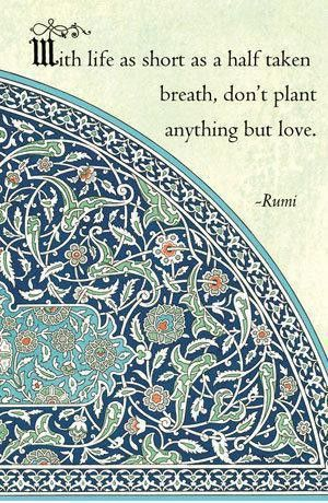 rumi quotes - With life as short as a half-taken breath, don't plant anything but love.