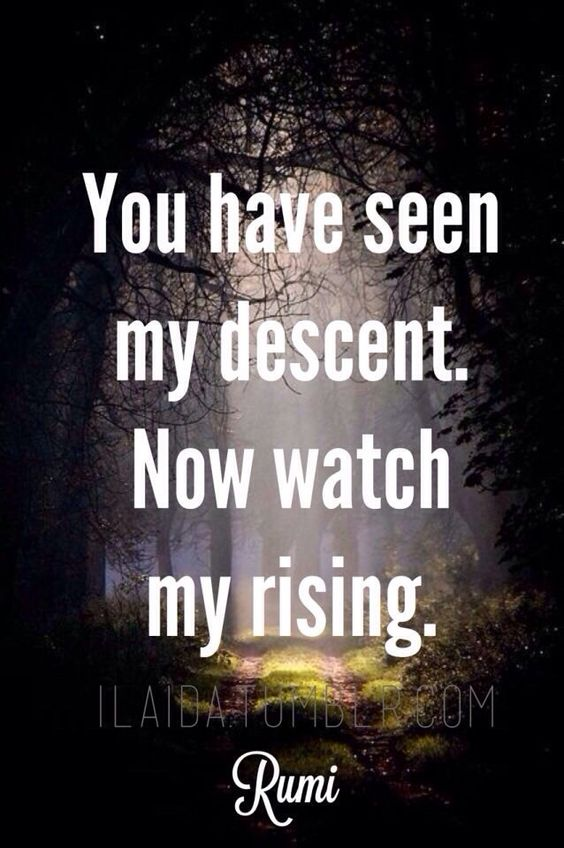 rumi quotes - You have seen my descent. Now watch my rising.