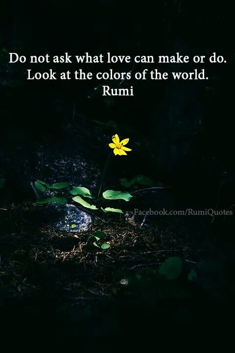 rumi quotes - Do not ask what love can make or do. Look at the colours of the world.