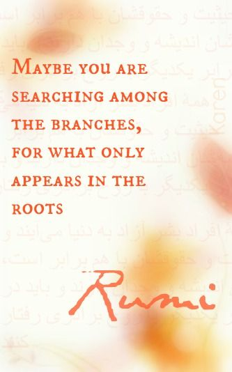 rumi quotes - Maybe you are searching among the branches, for what only appears in the roots.