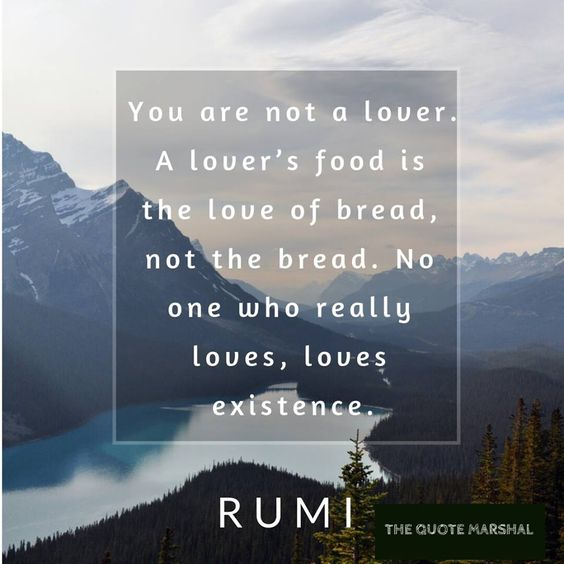 rumi quotes - You are not a lover. A lover's food is the love of bread, not the bread. No one who really loves, love existence.
