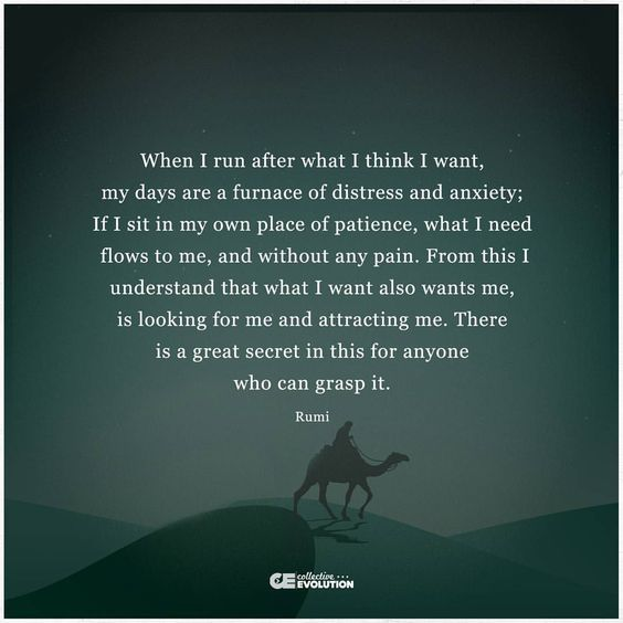 rumi quotes - When I run after what I think I want, my days are a furnace of distress and anxiety; If I sit in my own place of patience, what I need flows to me, and without any pain. From this I understand that what I want also wants me, is looking for me and attracting me. There is a great secret in this for anyone who can grasp it.