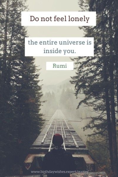 rumi quotes - Do not feel lonely. The entire universe is inside you.