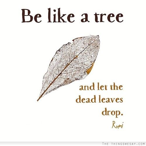 rumi quotes - Be like a tree and let the dead leaves drop.