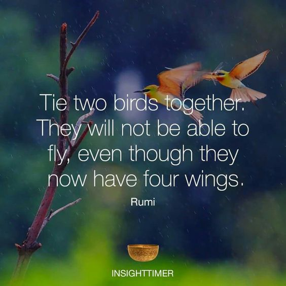 rumi quotes - Tie two birds together. They will not be able to fly, even though they now have four wings.