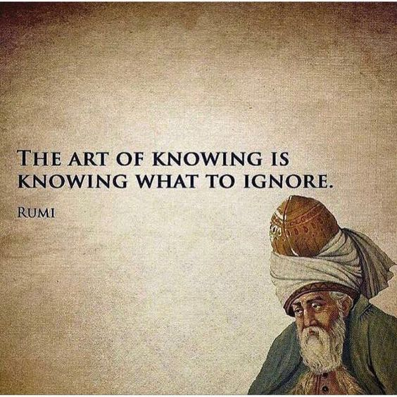 rumi quotes - The art of knowing is knowing what to ignore.