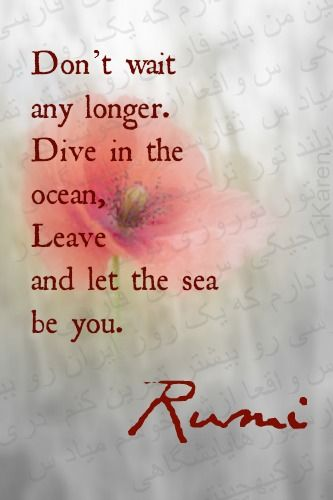 rumi quotes - Don't wait any longer. Dive in the ocean, leave and let the sea be you.