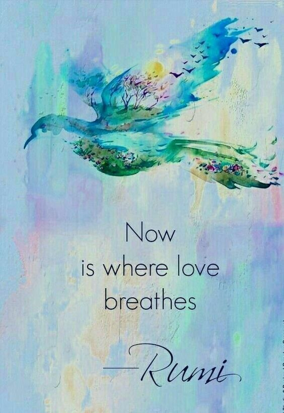 rumi quotes - Now is where love breathes.