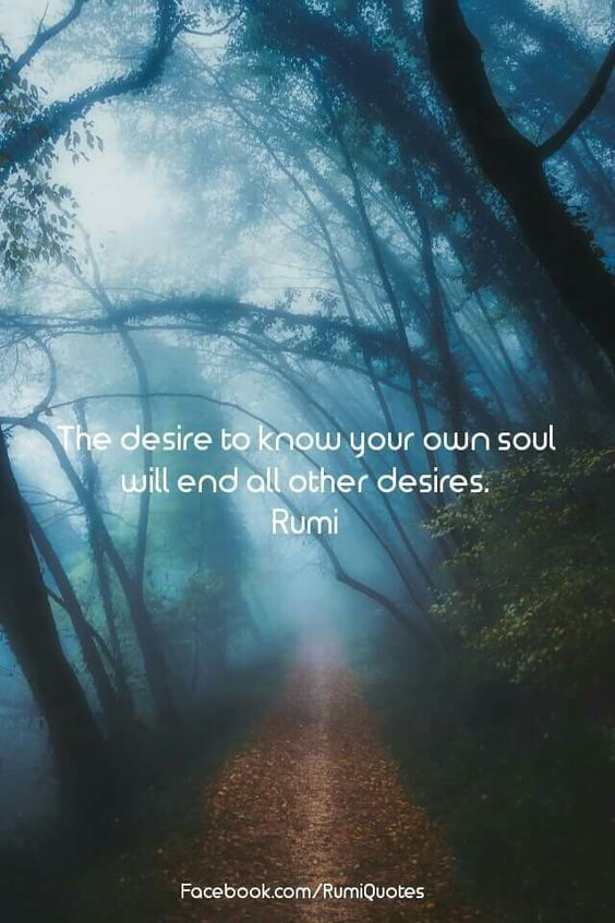 rumi quotes - The desire to know your own soul will end and all other desires.