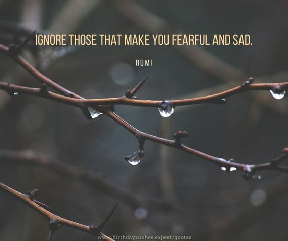rumi quotes - Ignore those that make you fearful and sad.