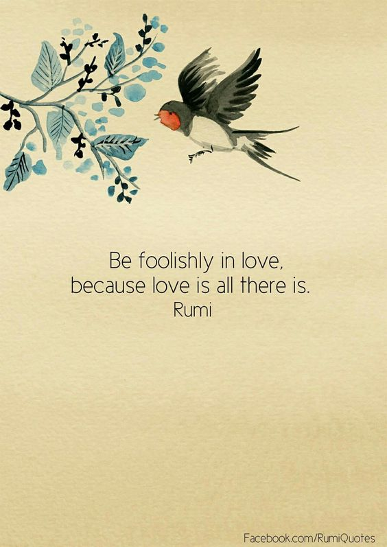 rumi quotes - Be foolishly in love, because love is all there is.