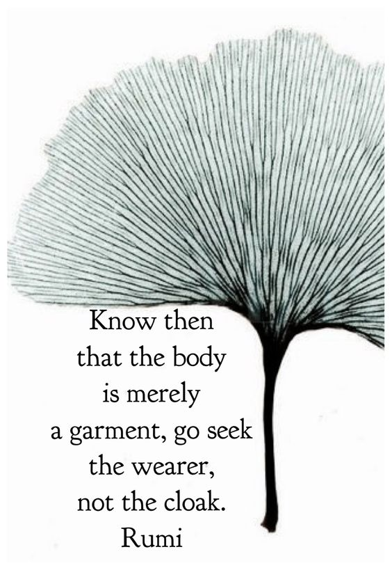 rumi quotes - Know then the body is merely a garment. Go seek the wearer, not the cloak.