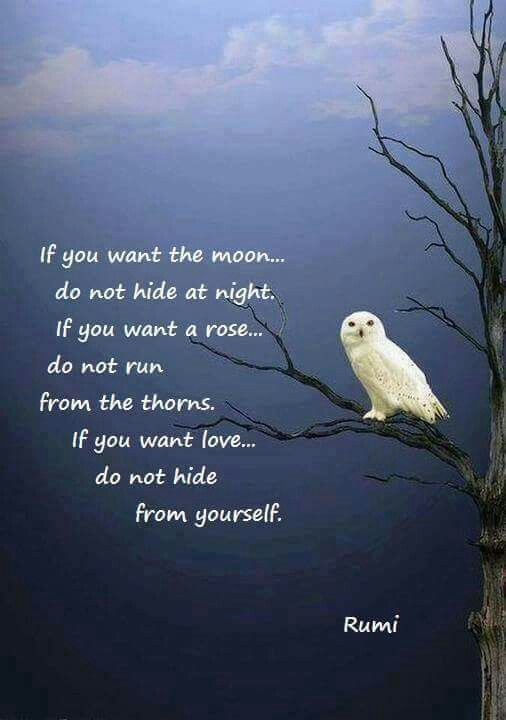 rumi quotes - If you want the moon, do not hide from the night. If you want a rose, do not run from the thorns. If you want love, do not hide from yourself.