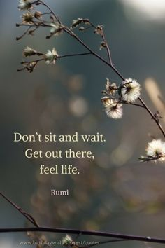 rumi quotes - Don't sit and wait. Get out there, feel life.