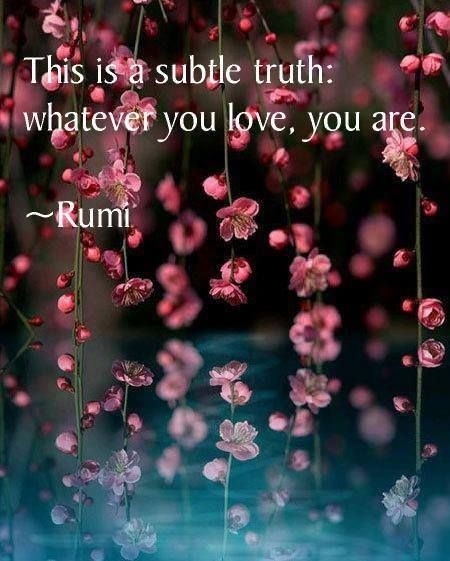 rumi quotes - This is a subtle truth: whatever you love, you are.