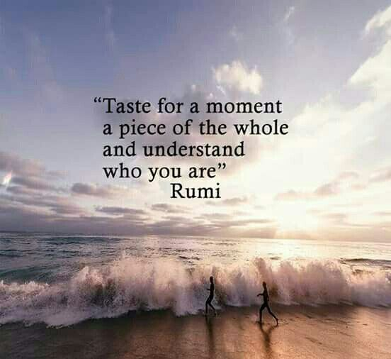 rumi quotes - Taste for a moment a piece of the whole and understand who you are.