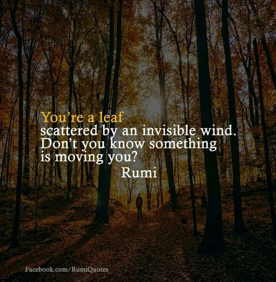 rumi quotes - You're a leaf scattered by an invisible wind. Don't you know something is moving you.