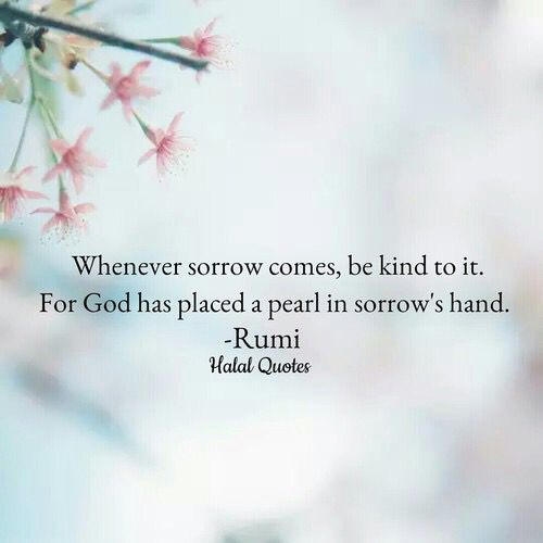 rumi quotes - Whenever sorrow comes, be kind of it. For God placed a pearl in sorrow's hand.