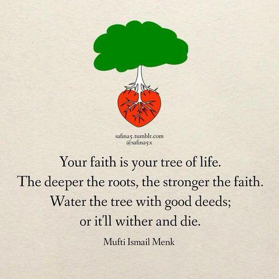 mufti menk quotes on life