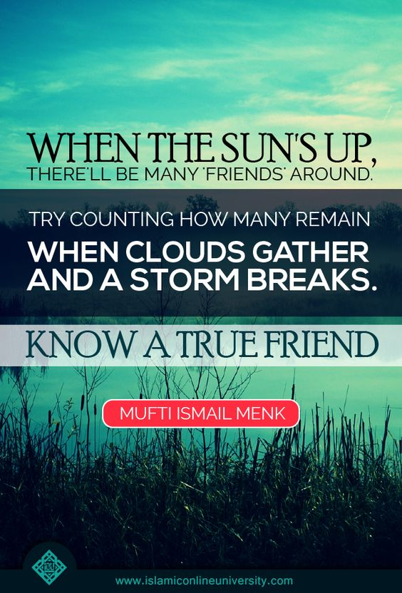 mufti menk quotes on friends